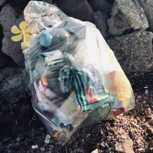 Abfall, gesammelt am Strand